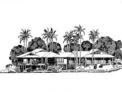 Desenho 79