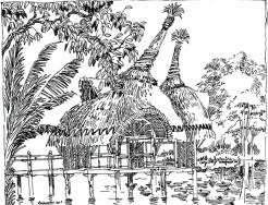 Desenho 63